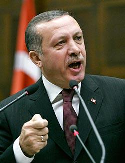 ضحى العاشور,Duha Ashour, أردوغان,تأملات في اسلام أردوغان